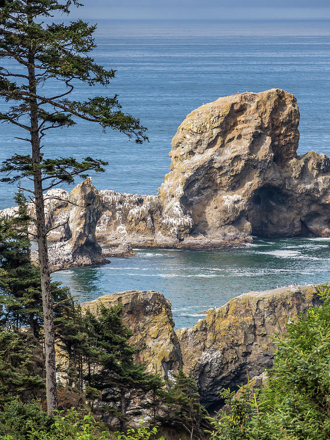 Oregon Coast 2 by Mark Mille