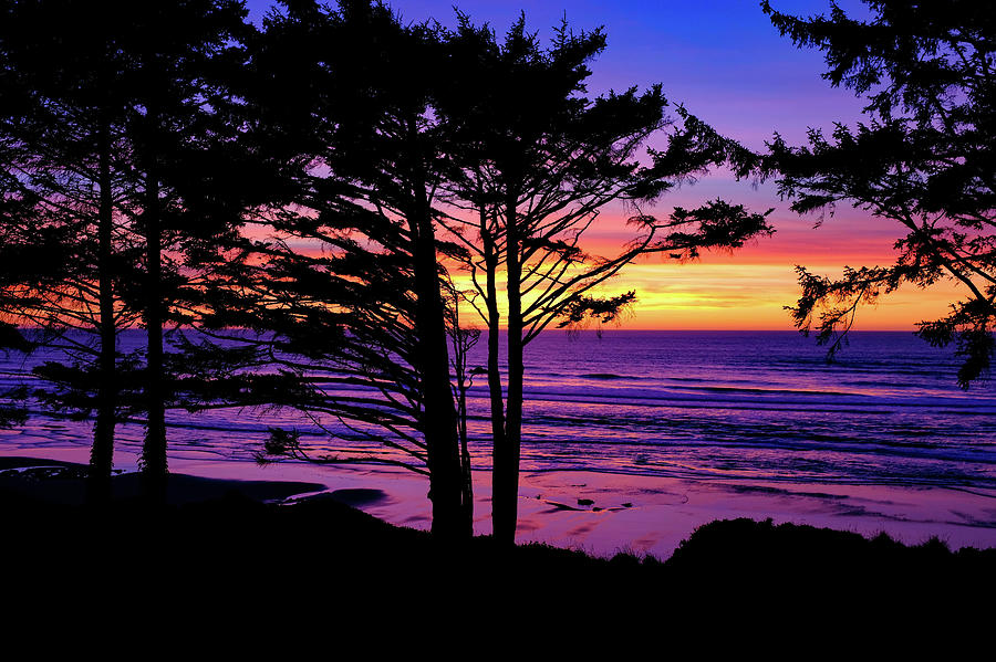 Oregon Coast Sunset by Ron White