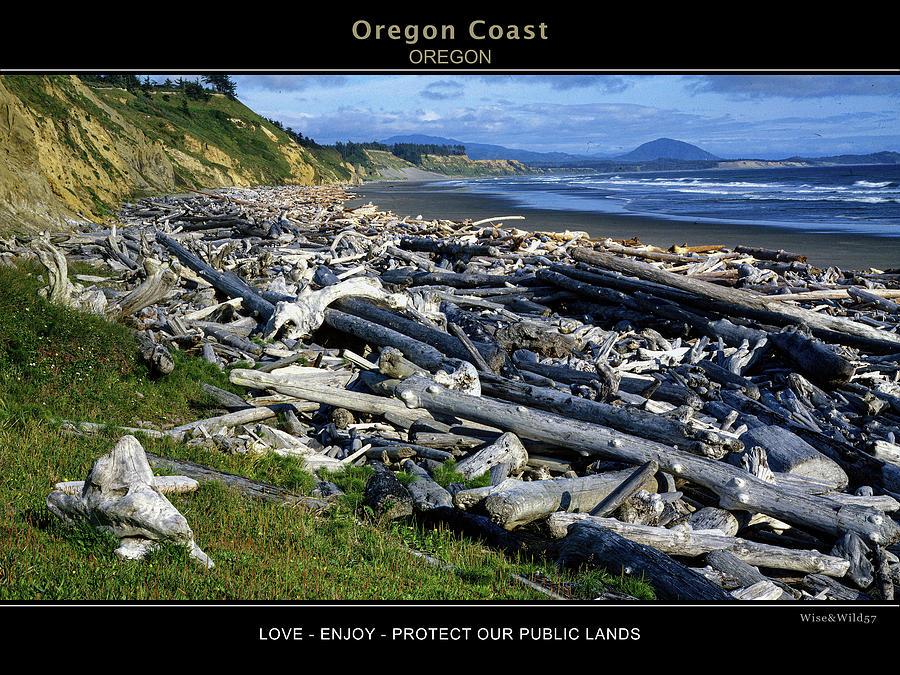 Oregon Coast by WiseWild57