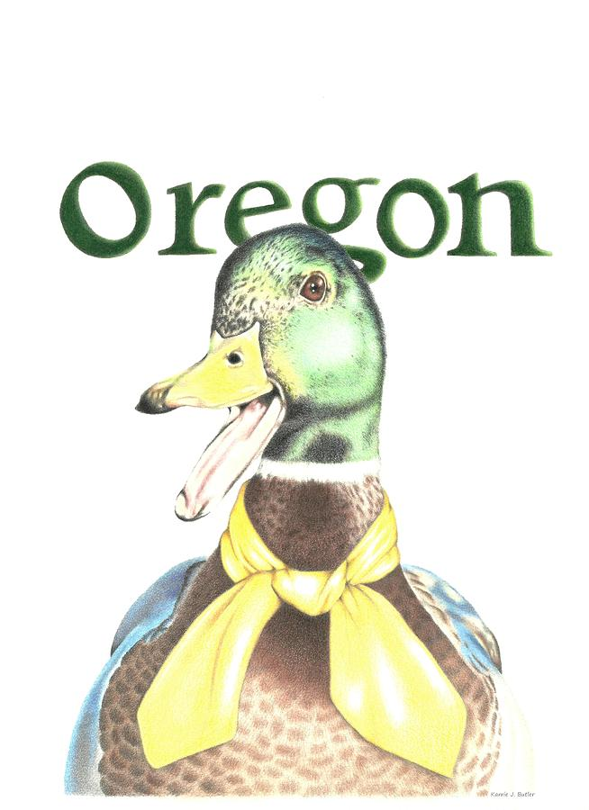 Oregon Duck Drawing - Oregon Duck by Karrie J Butler