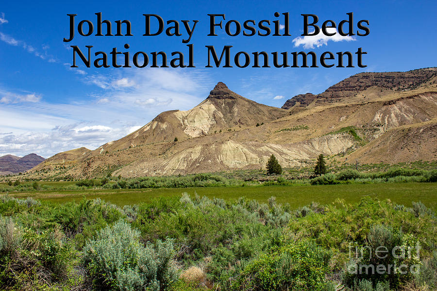 Oregon Photograph - Oregon - John Day Fossil Beds National Monument Sheep Rock 1 by G Matthew Laughton