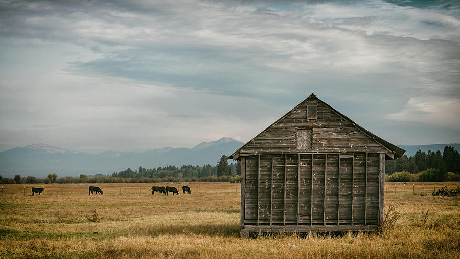 Oregon Pastoral by Joseph Smith