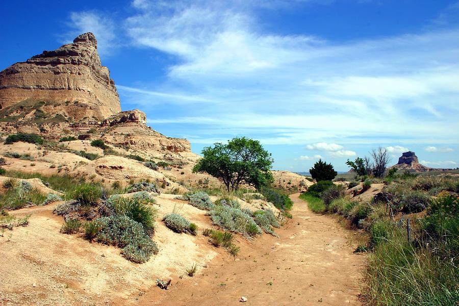 Oregon Trail Photograph by Wweagle