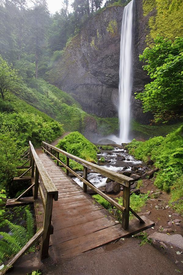 Oregon, United States Of America Photograph by Design Pics / Craig Tuttle