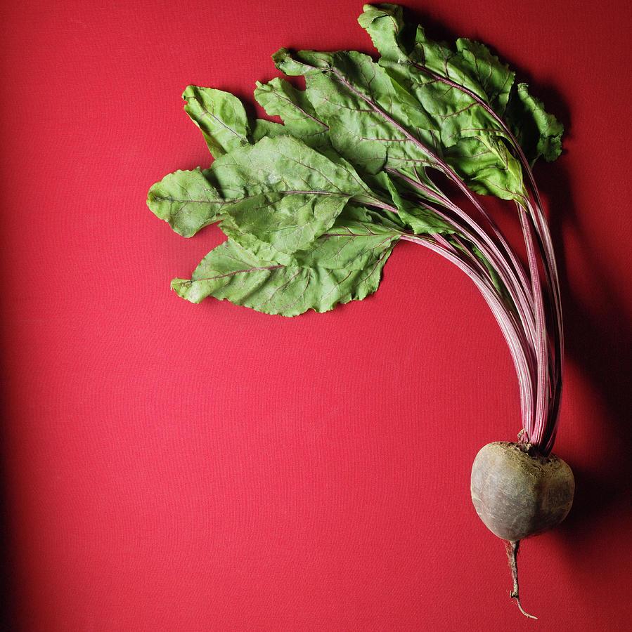 Organic Beet Photograph by Monica Rodriguez