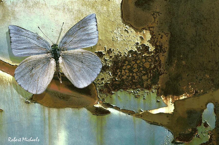 Organic Butterfly by Robert Michaels