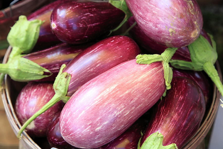 Organic Eggplant Photograph by Wendy Connett