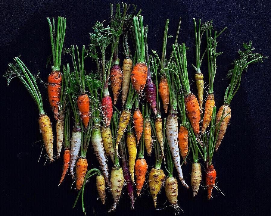 Organic Rainbow Carrots by Sarah Phillips