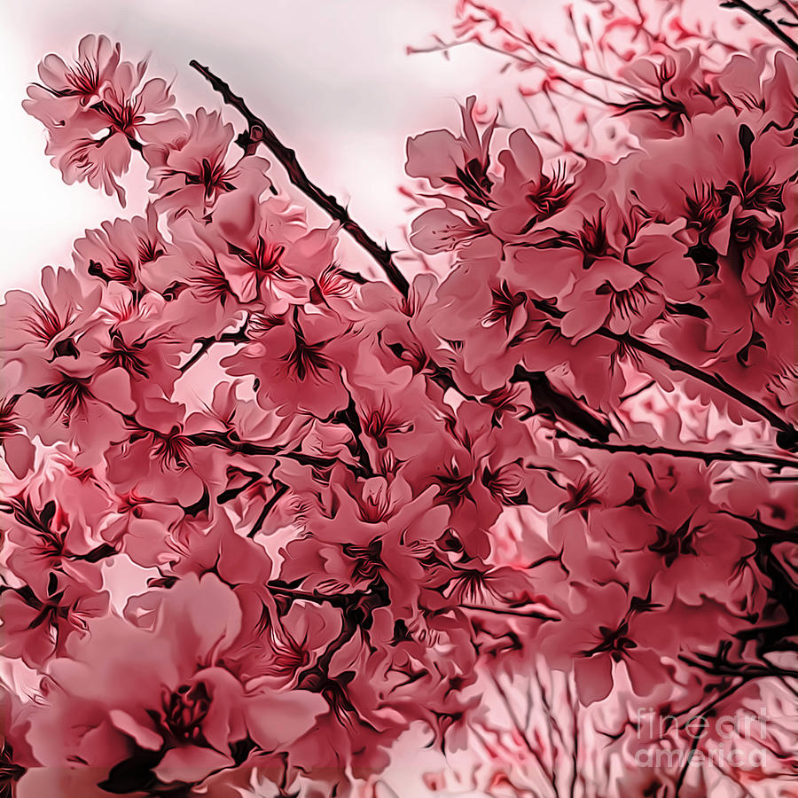 Ornamental Cherry Branches Pink Stylized Digital Art By Mira Minerva