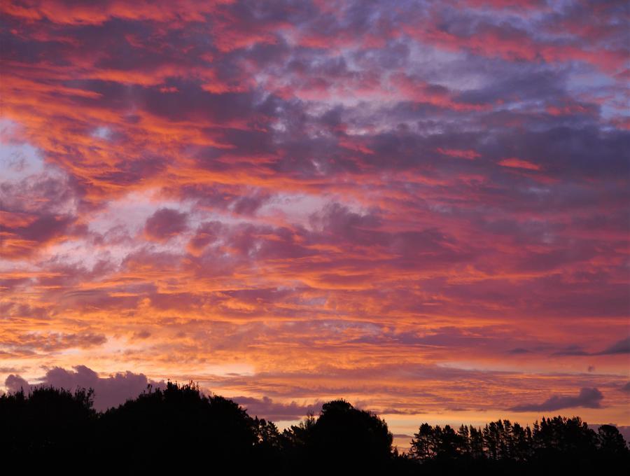 Oropi Sunset by Peter Mooyman
