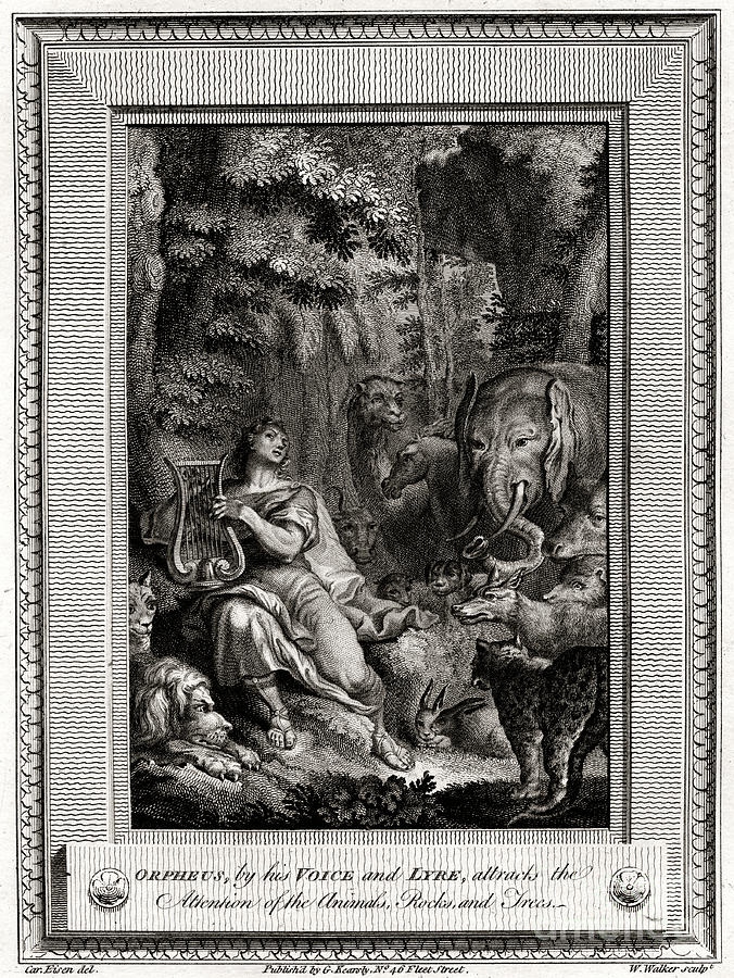 Orpheus, By His Voice And Lyre Drawing by Print Collector