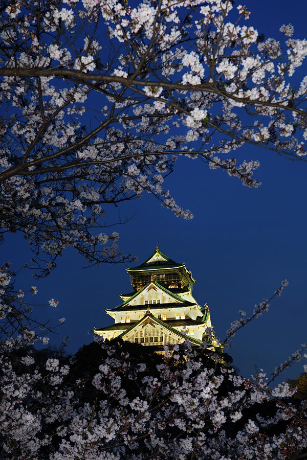 Osaka Castle With Cherry Blossoms At Photograph by John W Banagan