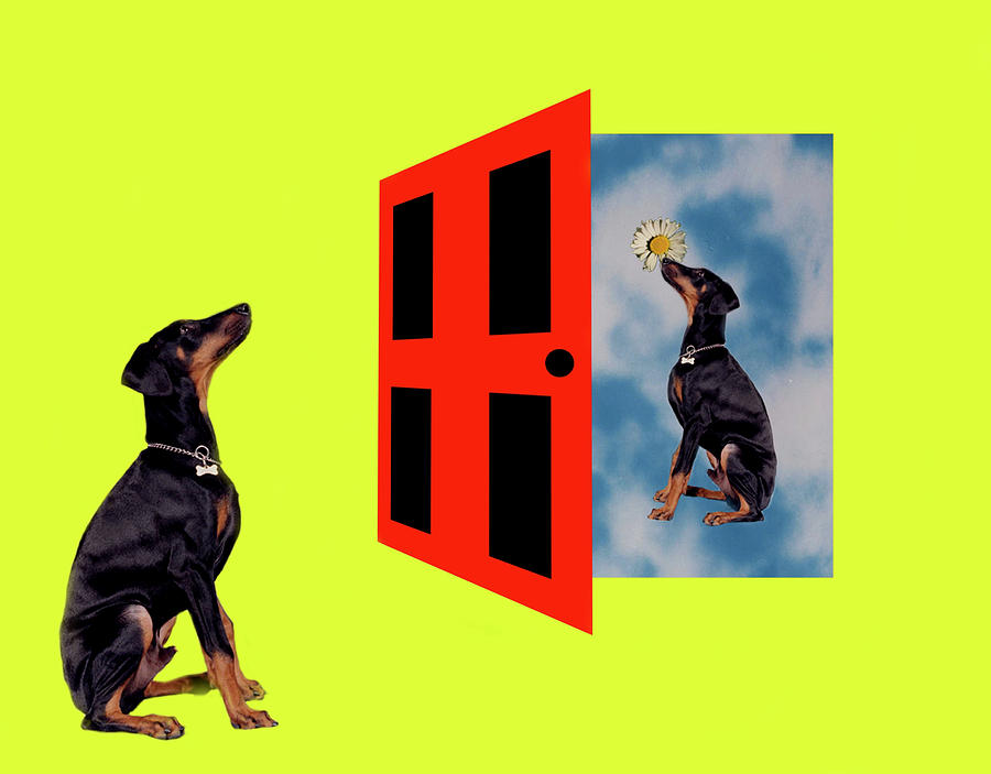 Dog Digital Art - Other Side Of The Door by Nikki Attree