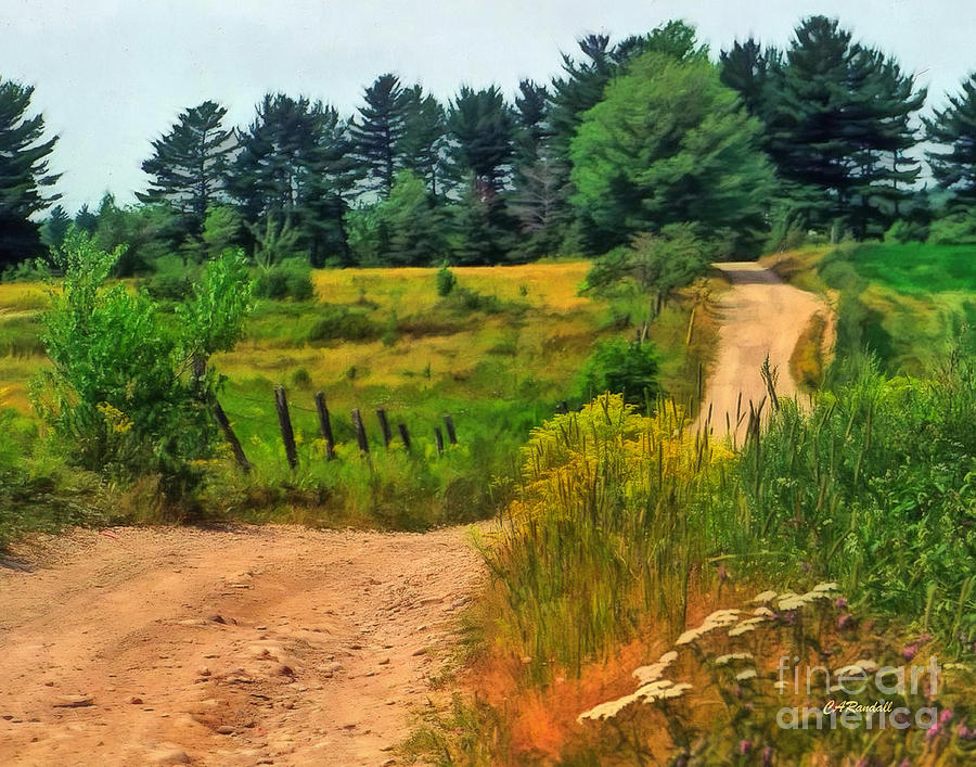 Out The Back Road by Carol Randall