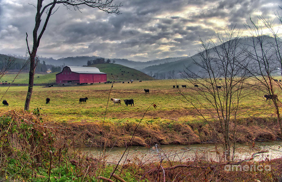 Barn Photograph - Out To Pasture by James Foshee