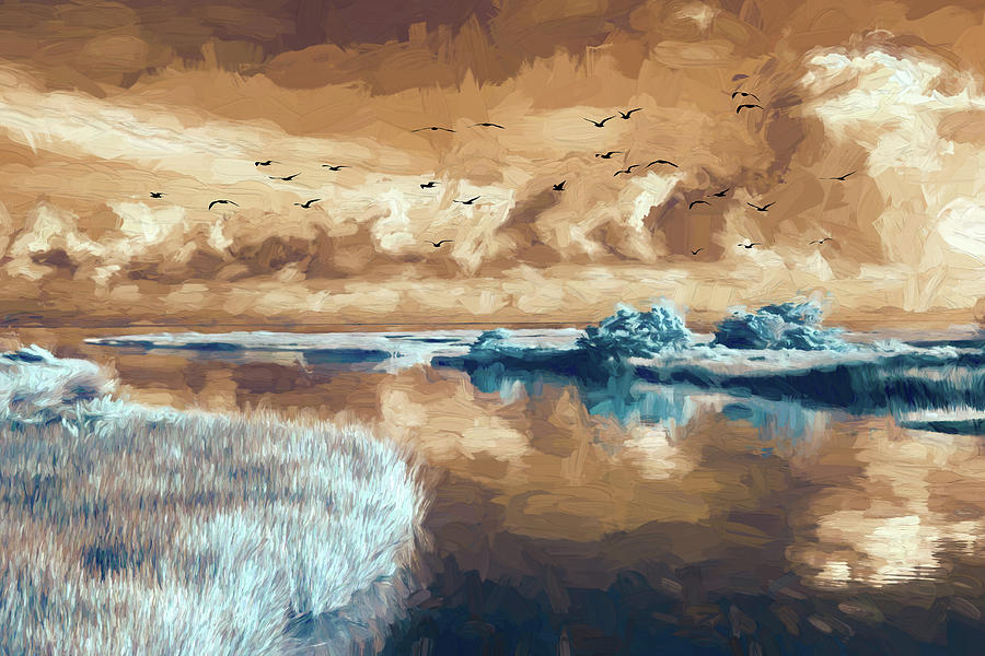 Outer Banks Inlet with Birds FX by Dan Carmichael