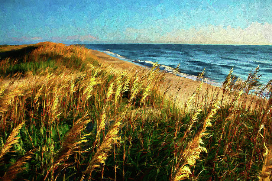 Outer Banks View AP by Dan Carmichael