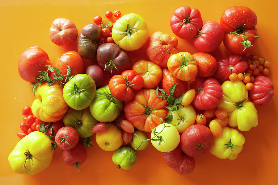 Overhead Of A Variety Of Tomatoes Photograph by Annabelle Breakey