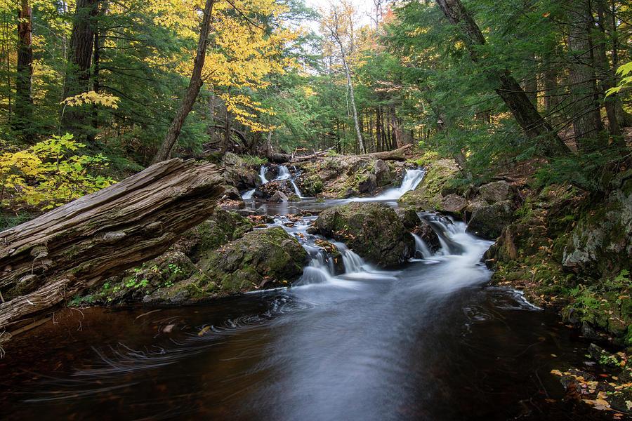 Overlooked Falls 10091901 by Rick Veldman