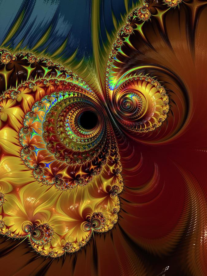 Owl Eyes by Erika Fawcett