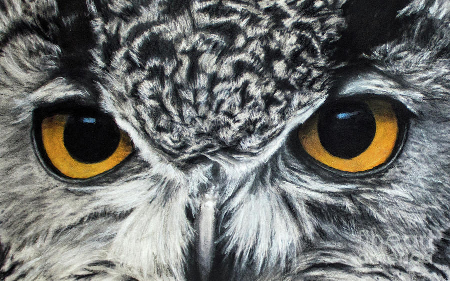 Owl Eyes by Michael Cross