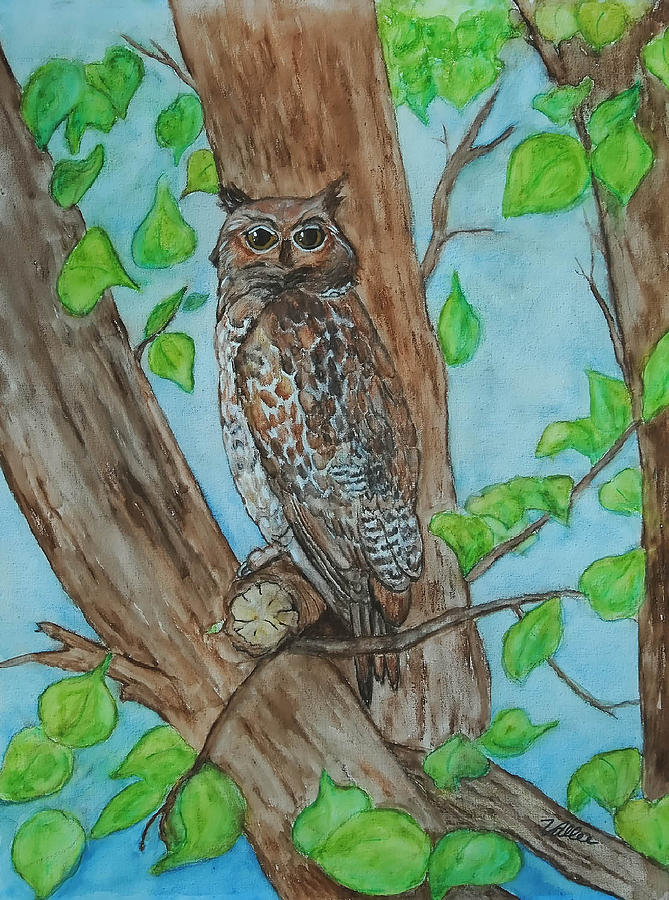 Nature Painting - Owl In Our Tree by Vallee Johnson