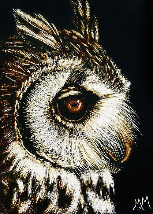 Owl Portrait by Monique Morin Matson