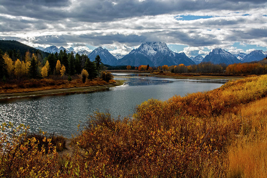 Oxbow Bend by Scott Read