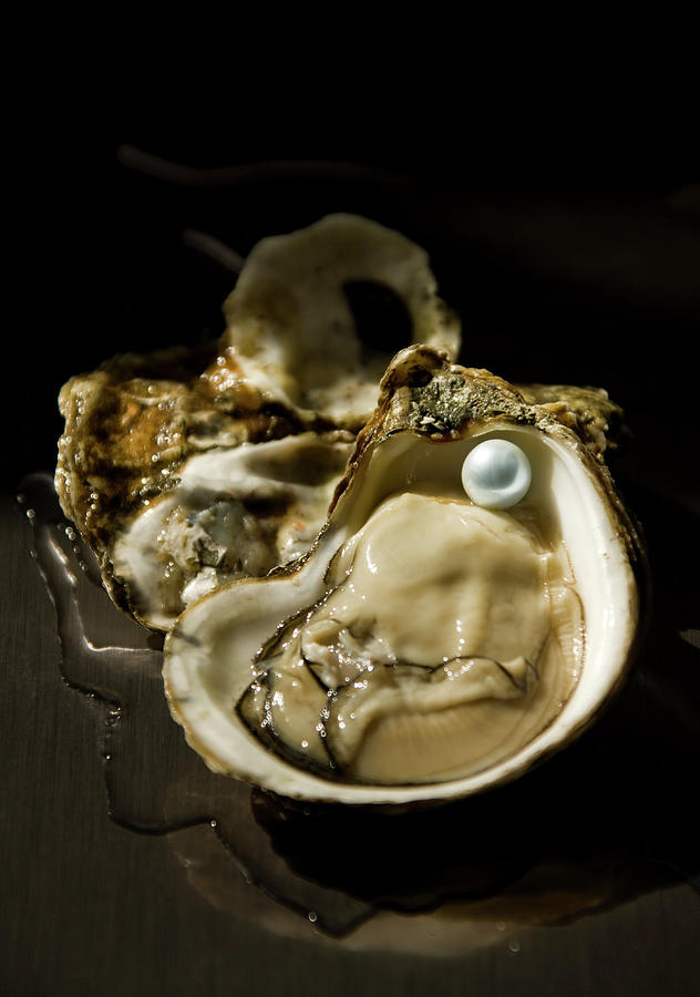 Oyster On The Half Shell With Pearl Photograph by Tooga