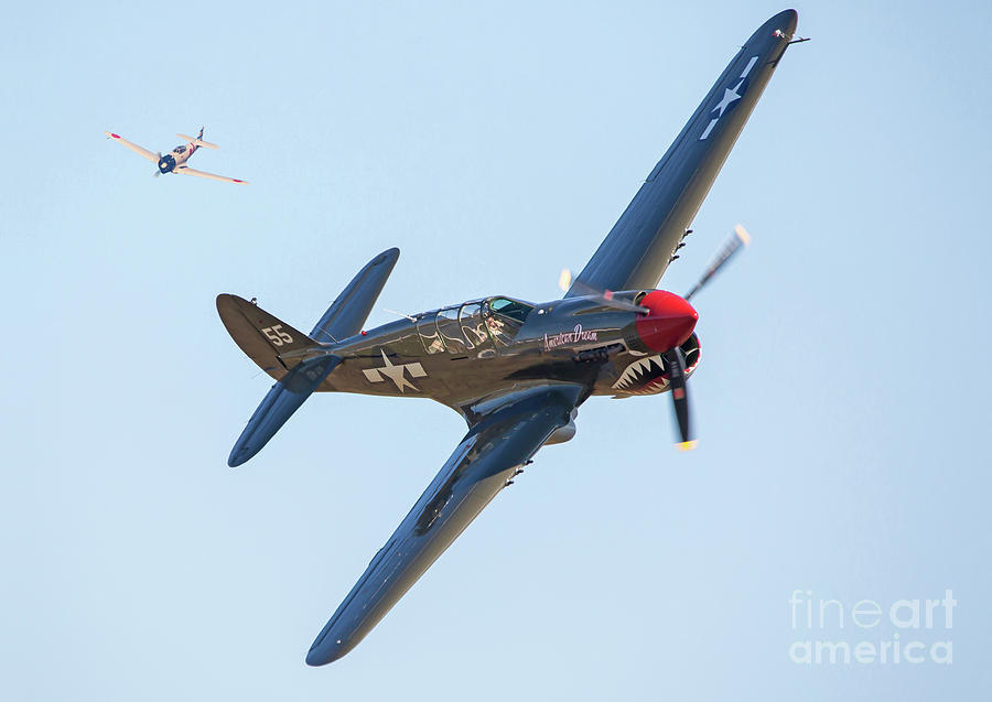 P-40 Warhawk Aircraft in Dogfight by Kevin McCarthy