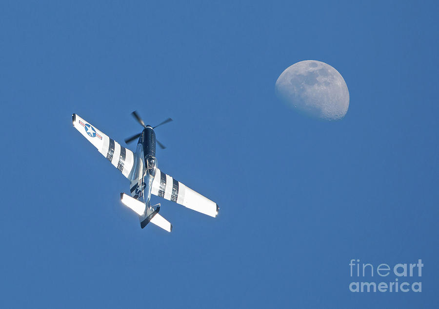 P-51 Mustang Fighter in Flight by Kevin McCarthy