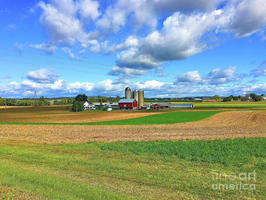 Pennsylvania Farmland Series  by Eunice Warfel