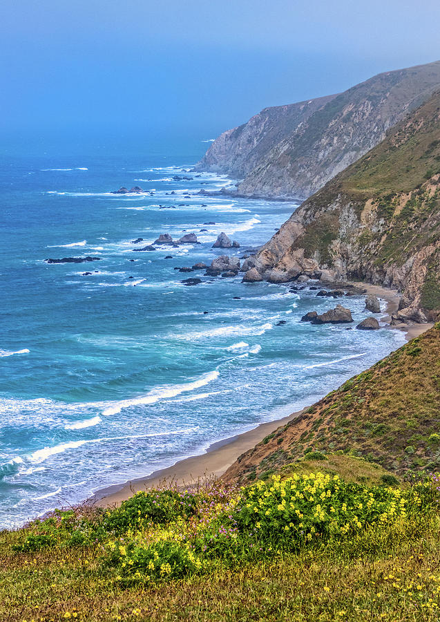 Pacific Coast along the Tomales Point Trail by Carolyn Derstine
