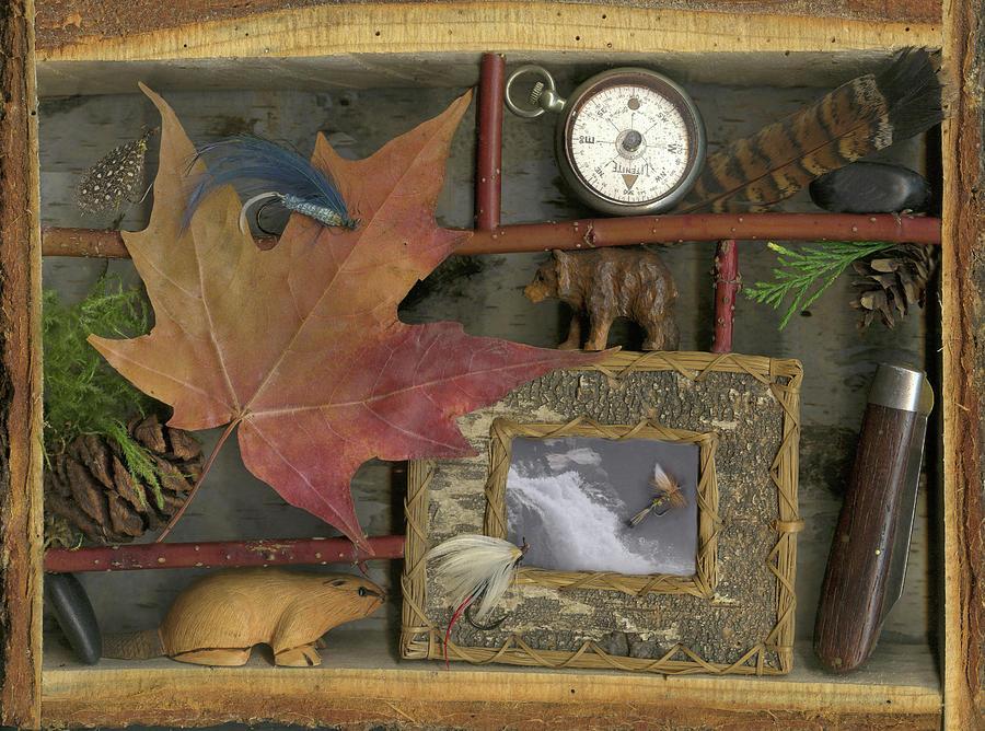 Maple Leaf Photograph - Pacific Northwest by Sandi F Hutchins