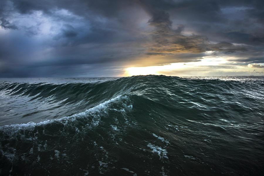 Pacific Rim by Sean Davey
