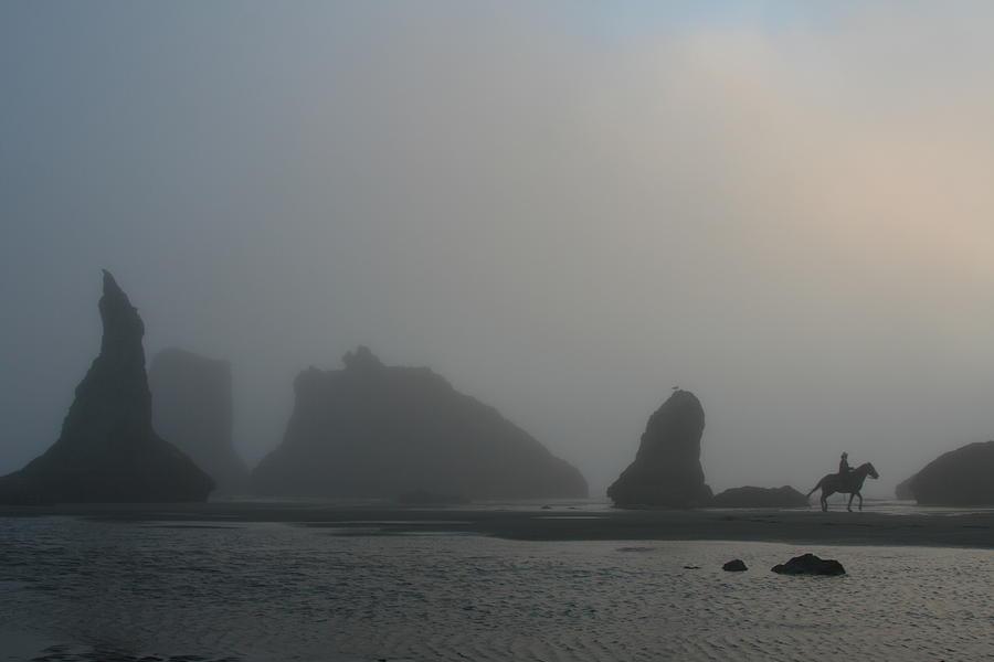 Pacific Rock Trot by Dylan Punke