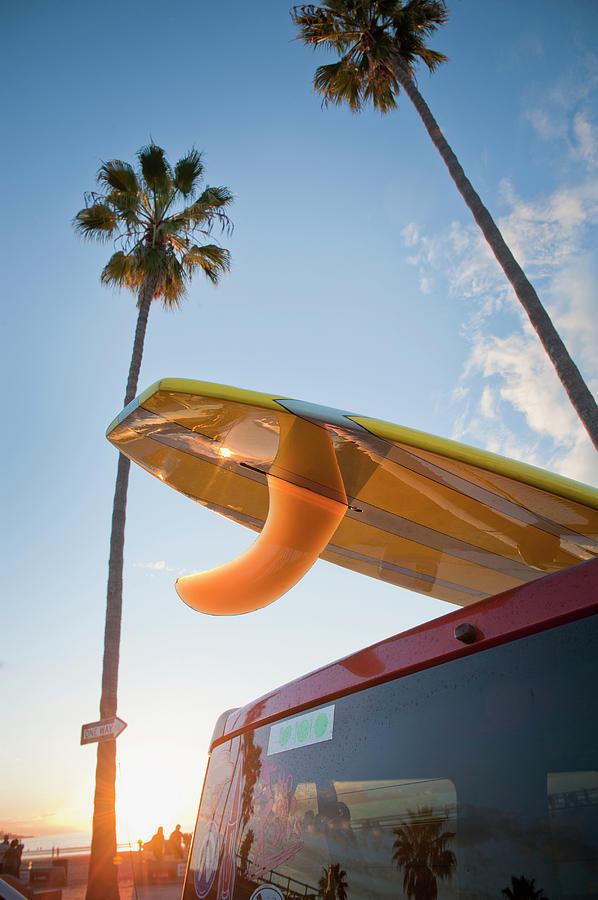Paddleboard On Top Of Car With Palm Photograph by Stephen Simpson