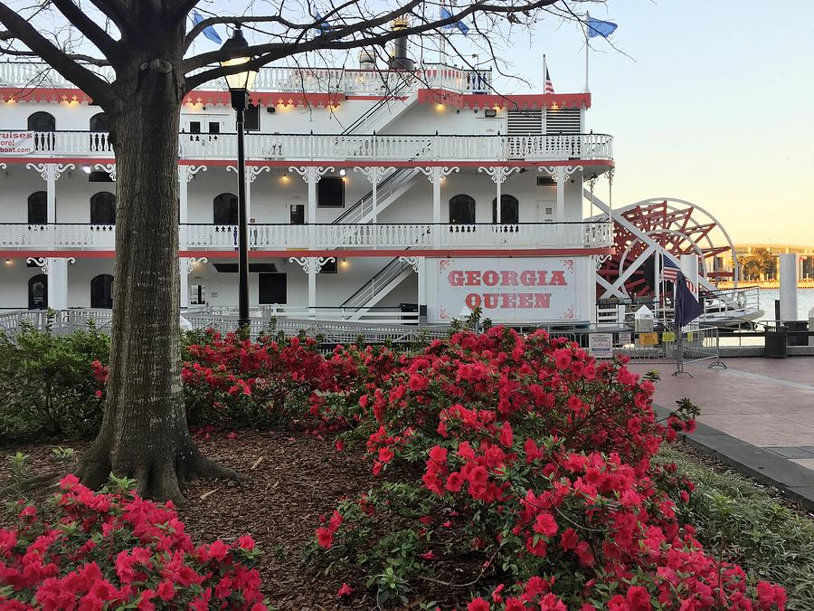 Paddlewheeler and Azaleas by Bradford Martin