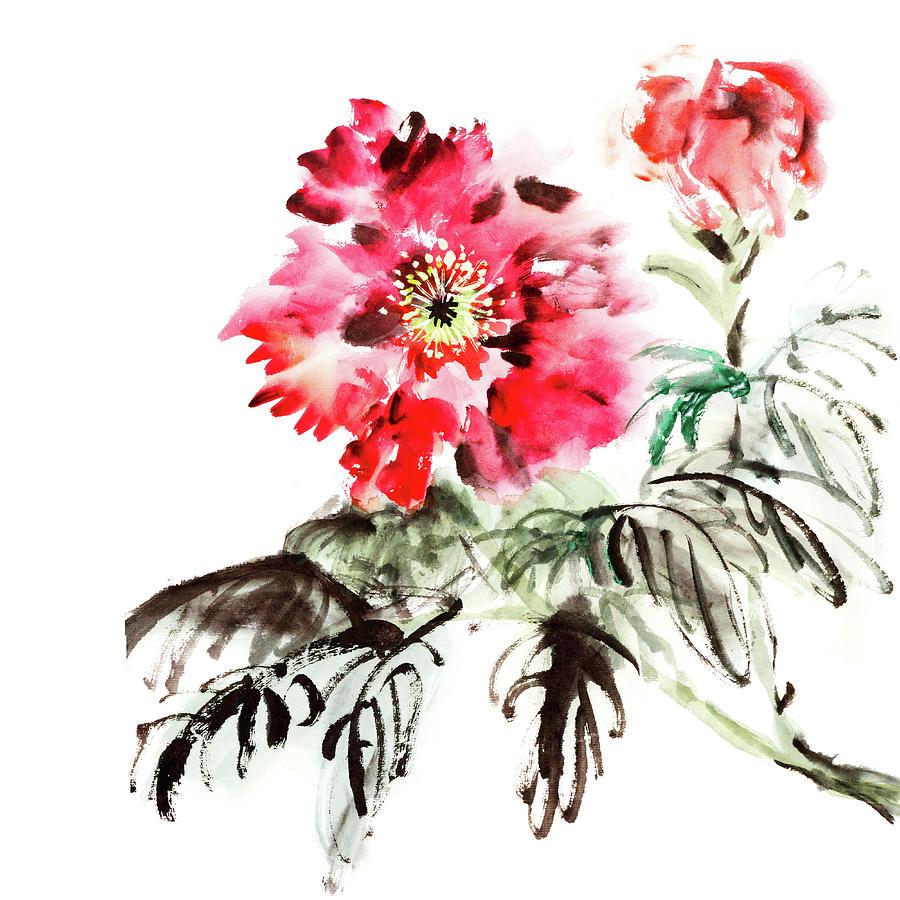 Paeonia Flowers Digital Art by Vii-photo