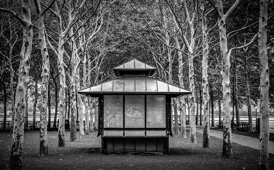 pagoda by Steve Stanger