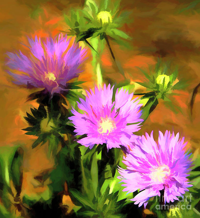 Painted Asters by Irene Dowdy