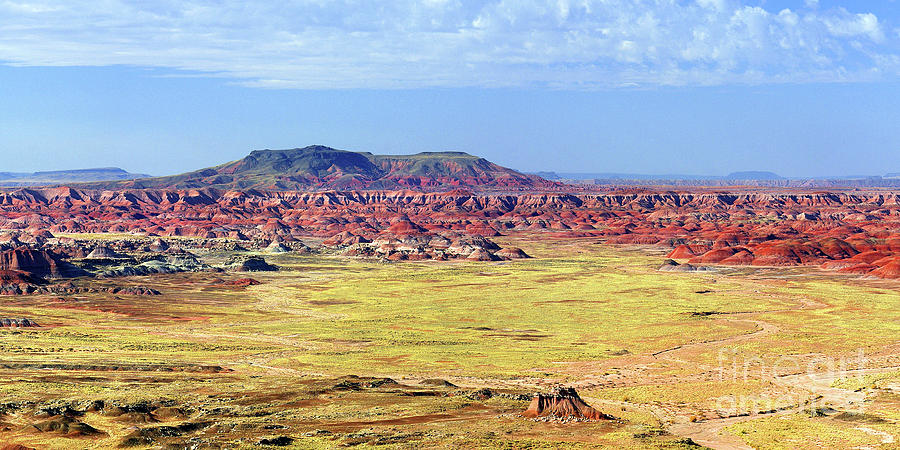 Painted Desert Photograph - Painted Desert Panorama by Douglas Taylor