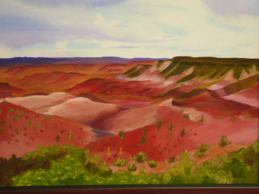 Painted Desert by Susan Anderson