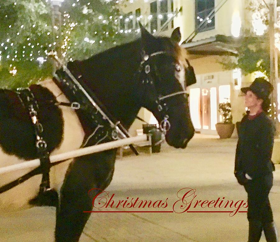 Painted Horse Christmas Greetings by Debra Grace Addison