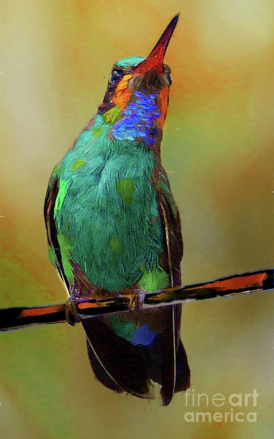 painted hummingbird by John Kolenberg