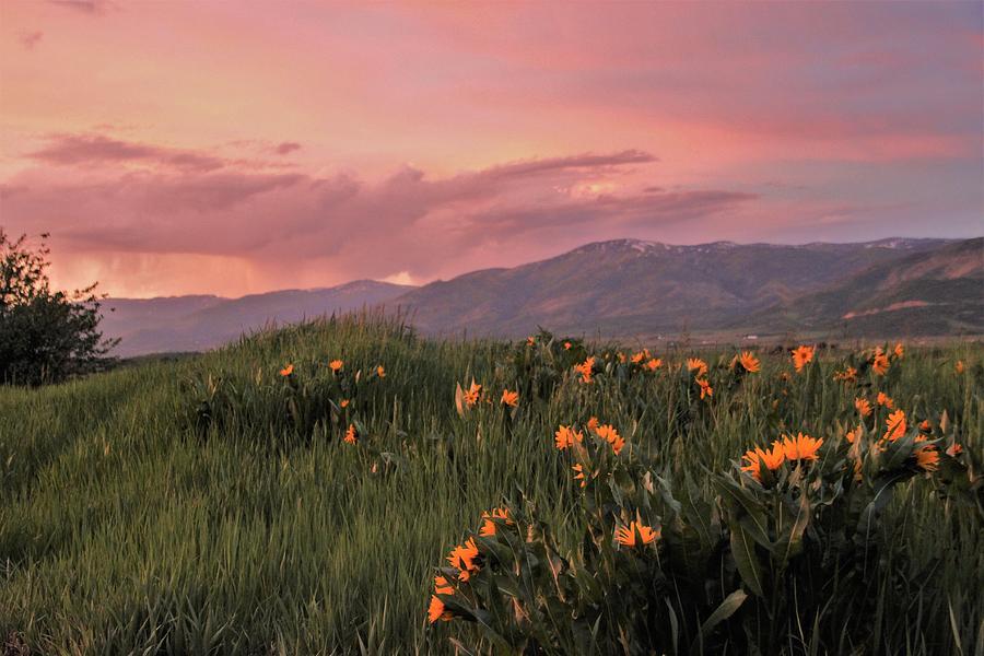 Landscape Photograph - Painted Landscape by Larry Kniskern