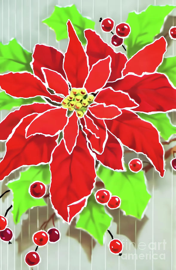 Painted Poinsettia by D Hackett