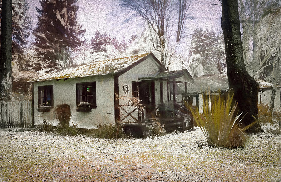 Painted Snow Dusting by Bill Posner