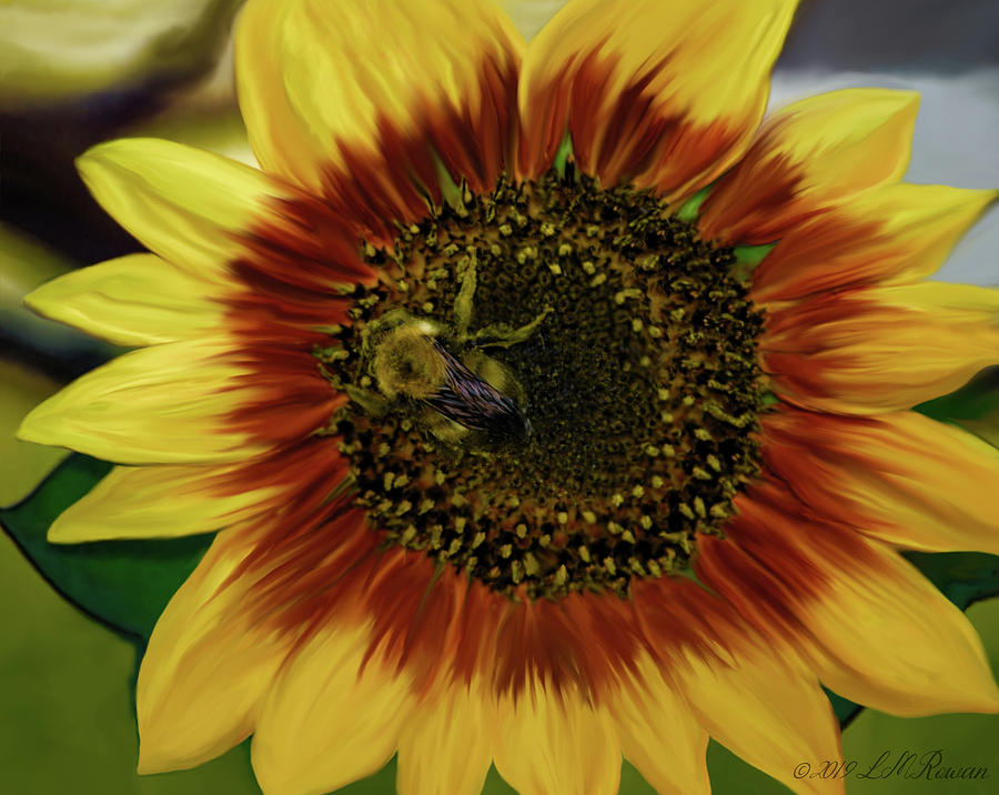 Bumble Bee Digital Art - Painted Sunflower And Bee by Images Undefined