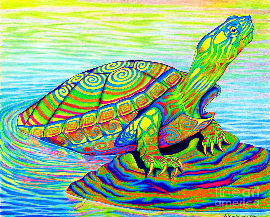 Turtle Drawing - Painted Turtle by Rebecca Wang